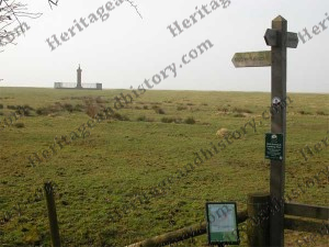Signposts point the way across the salt marsh